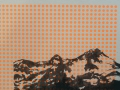 KunstFlorineOtt_2015_0017_Layer 2